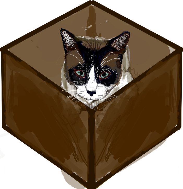 schrodingers cat in a box black brown white logo