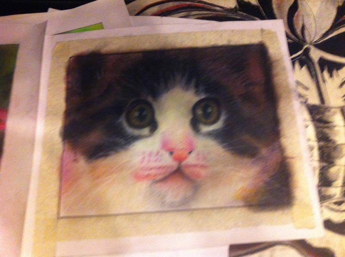 pastel art cat drawing sixth grader realistic logo